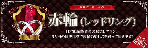 赤輪(レッドリング)